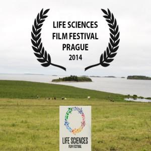 Festival-Life-Sciences